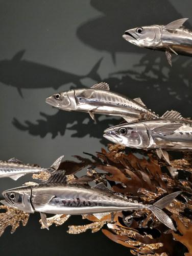 Mackerel shoal in stainless steel