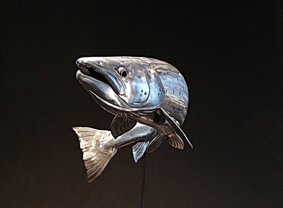 Salmon 7lb IMG_20210131_131038c.jpg