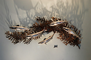 Wall mounted shoal of mackerel on bladder wrack sculpture