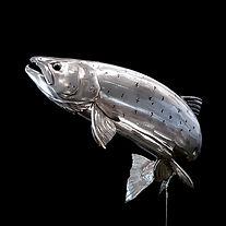 salmon%207lb%2020210131_124551_edited.jp