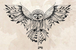 291 owl with backround