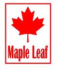 ML logo.png