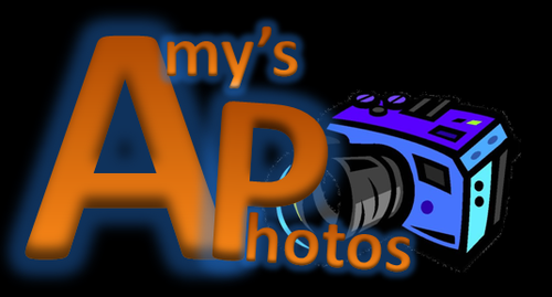 Amy Williams Logo.png