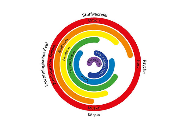 Healthpoint_Grafik_3.0 (1).jpg