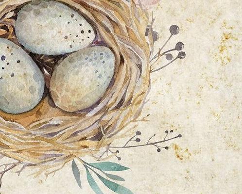 Quail Egg Note Cards