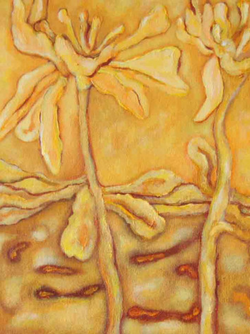 Yellow ( Amarillo)