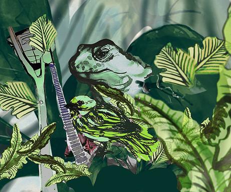 fågeln och sköldpaddan