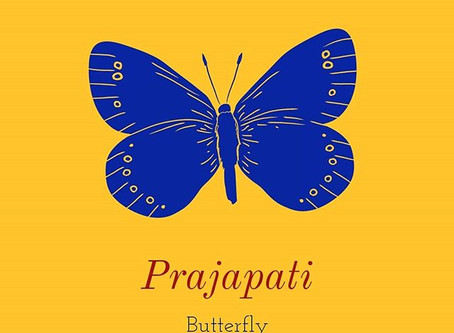 Is there is no Sanskrit word for the butterfly?