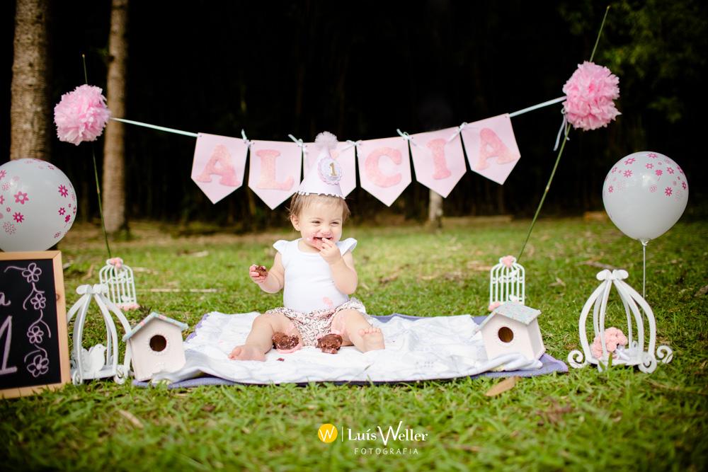 Luís_Weller_fotógrafo_de_casamento_familia_infantil_Alicia_smash_the_cake_Jaraguá_do_Sul