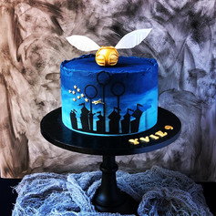 Quidditch Silhouette Cake