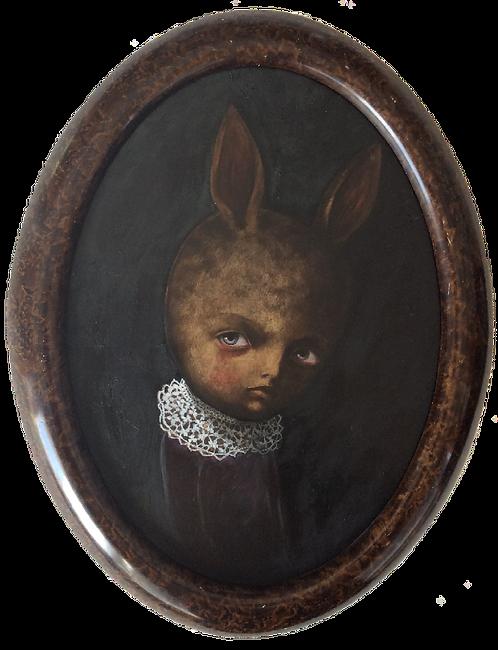 Nero coniglio
