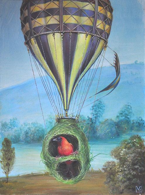 Il volo sulla Baia