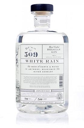 Buss n° 509 – White rain - Gin Belge