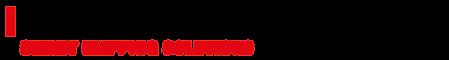 TDM Logo SMS 1-zeilig 800px.png