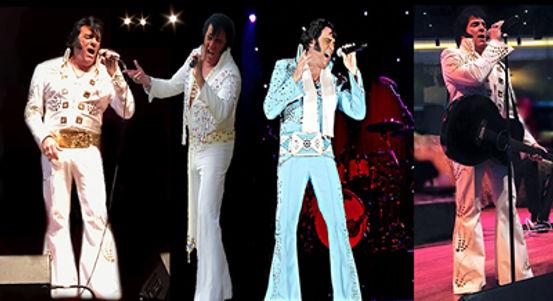 Robert Black Elvis Tribute