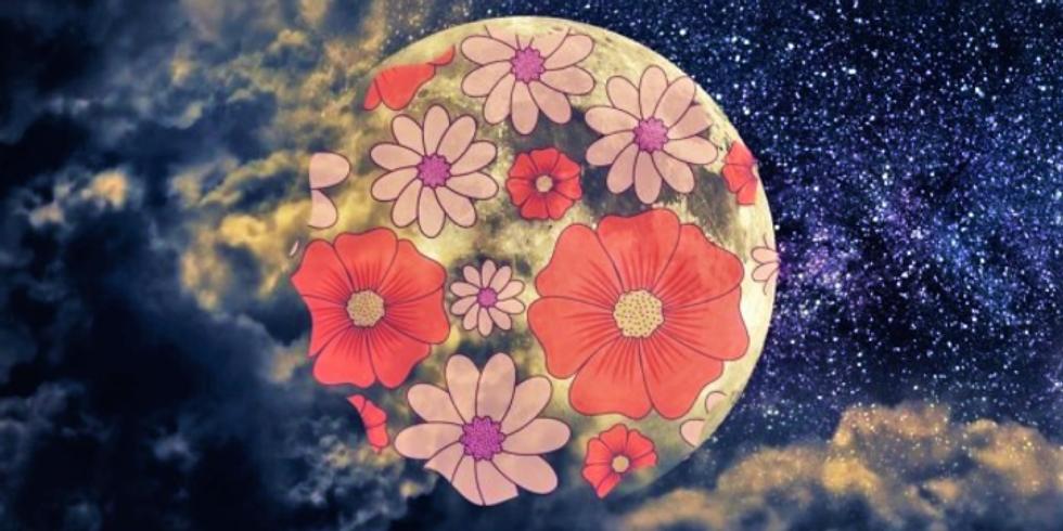 Moon Manifesting & Release