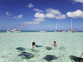 snorkel with stingrays.jpg
