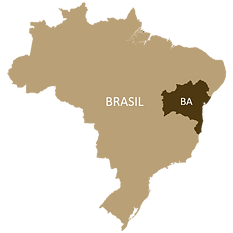 bahia mapa.png