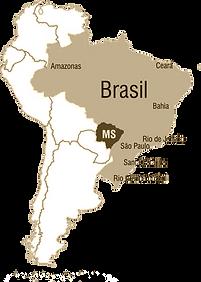 mapa brasil com ms.png