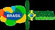 logo novo brasil.png