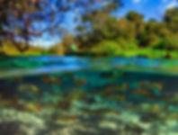 rio sucuri 2.jpg