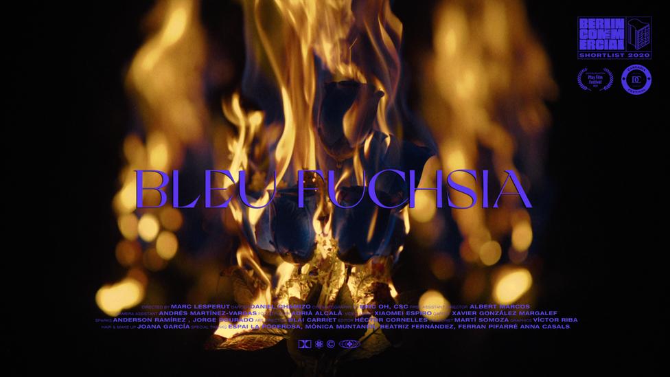 MUSIC VIDEO / BLEU FUCHSIA : ODEZENNE