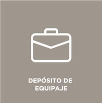 Iconos_Gris-Español-servicios-474_09.pn