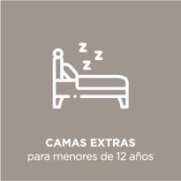 Iconos_Gris-Español-servicios-474_04.pn