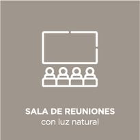 Iconos_Gris-Español-servicios-474_13.pn