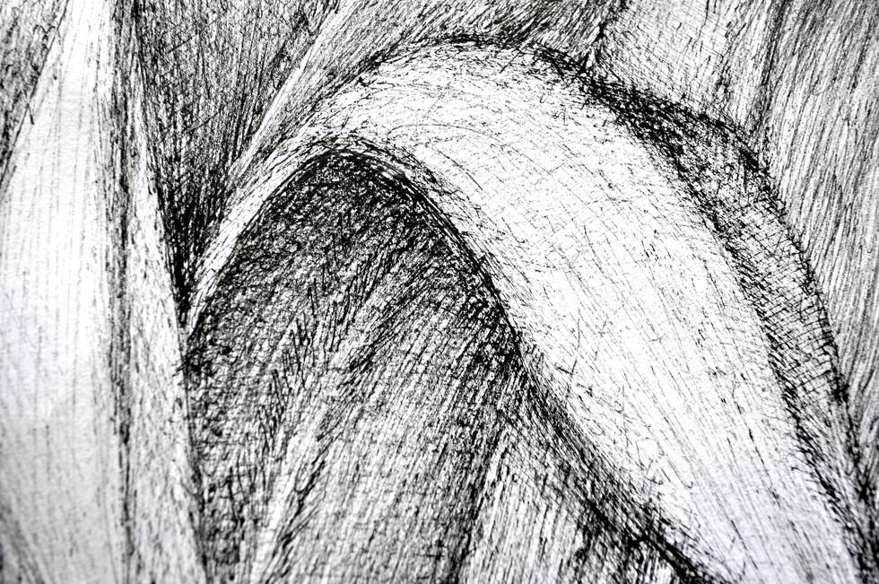 autoportrait_phormium_détail_-_RRR.JPG