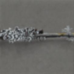 2 dessin lichen 2020 part 2.jpg