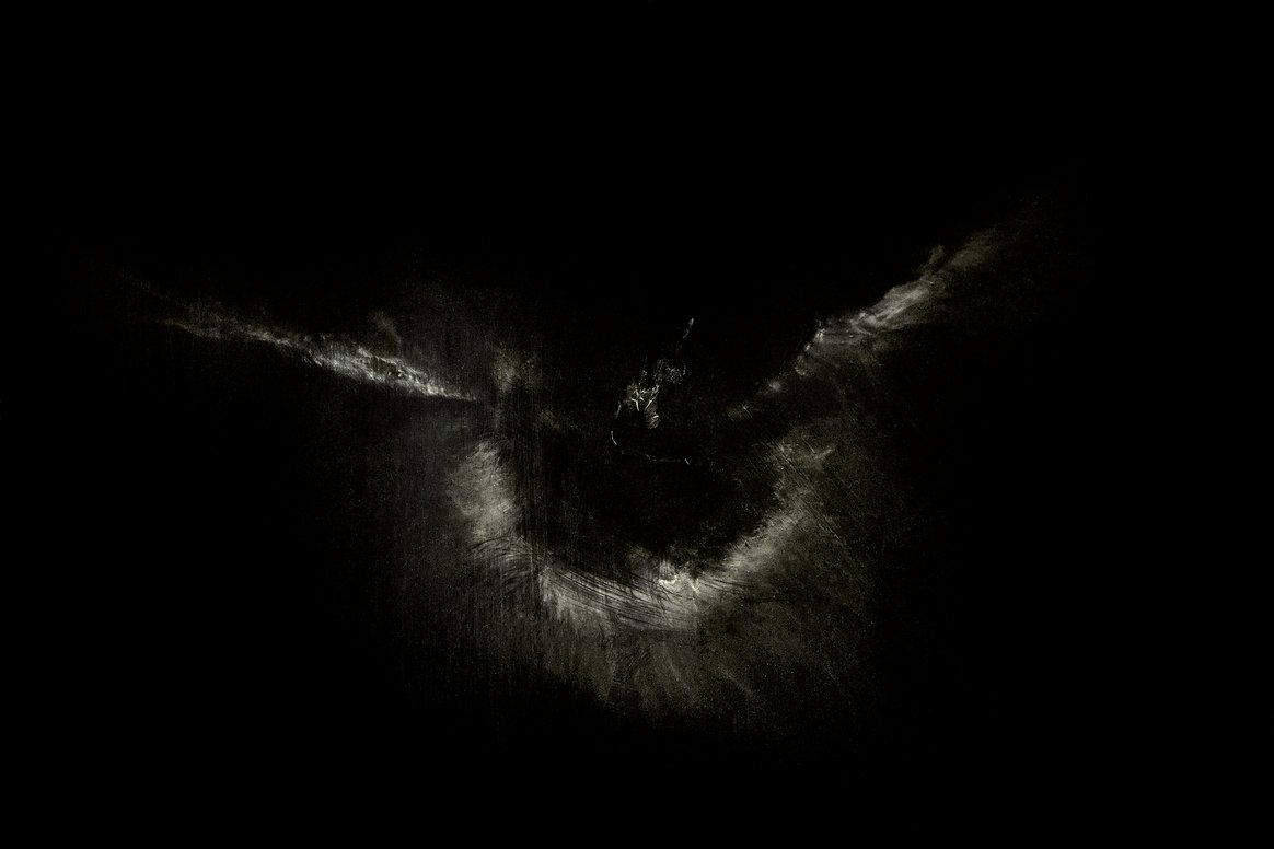 trace oiseau art gravure nuit photographie