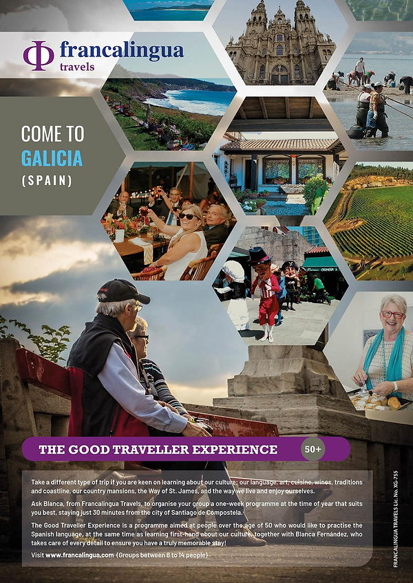 New poster the good traveller.jpg