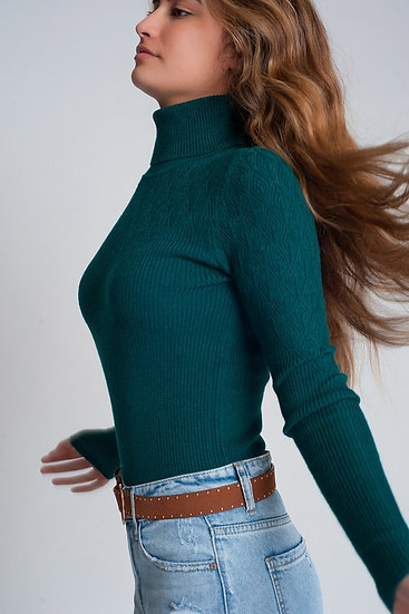 Soft Knitted Turtleneck Fitted Sweater in Green