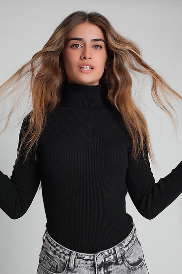 Soft Knitted Turtleneck Fitted Sweater in Black