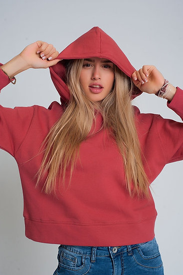 Hooded Sweatshirt in Maroon
