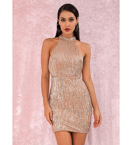 Amora Nude Sequin Party Dress