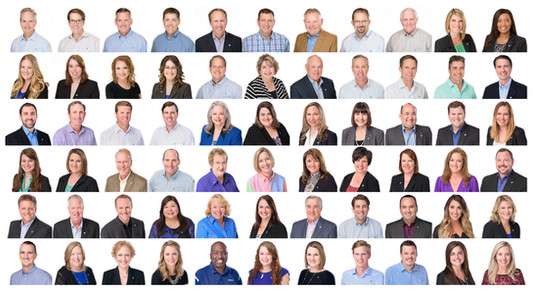 commercial-portrait-team-employees-staff.jpg