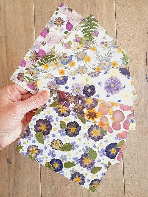 Pack de 6 cartes postales