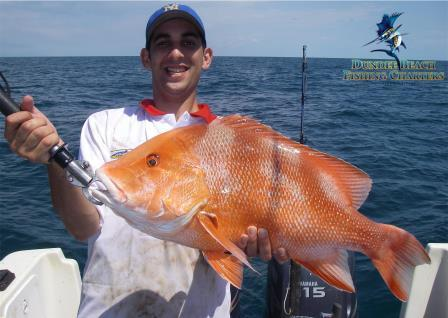 Red Emperor reef fishing charters