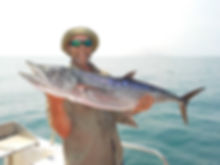 Catching mackerel with Darwin fishing charters at the Perron Islands