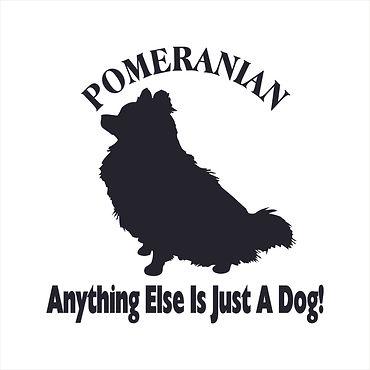 Pomeranian Anything 6x6.jpg