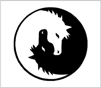 Horse Equestrian Ying Yang Pony Decal Window Sticker