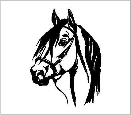 Horse Head Pony Vinyl Decal Window Sticker