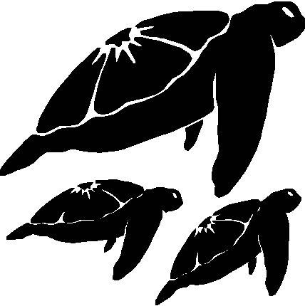 3 Sea Turtles Tortoise Turtle Decal