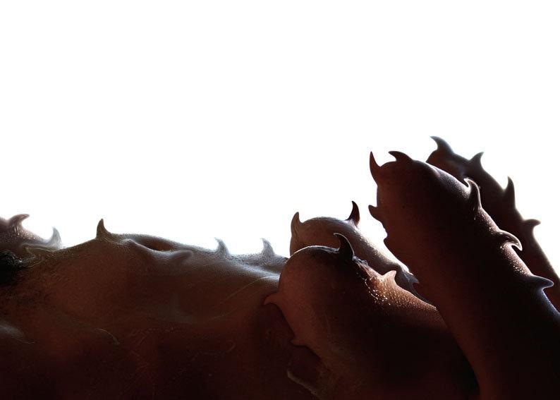 corpo coperto di spine - foto di carlo de meo - figura femminile nuda su fondo bianco