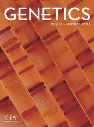 Genetics Journal