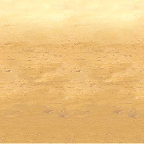 Backdrop Desert Sand 4' x 30'
