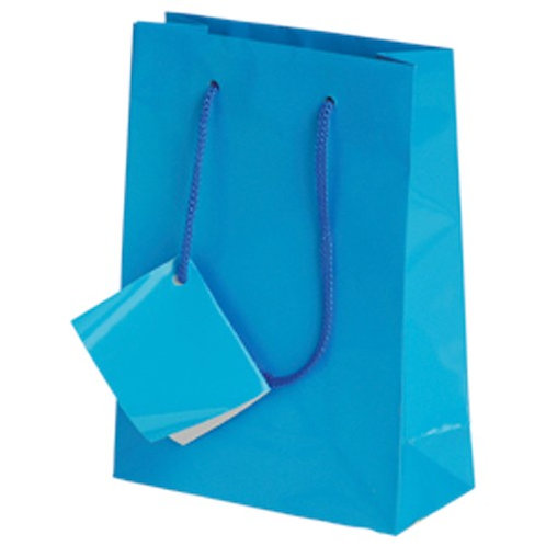 Small Gift Bag Turquoise 12Ct