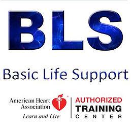 BLS Student Handbook (Mail Order)